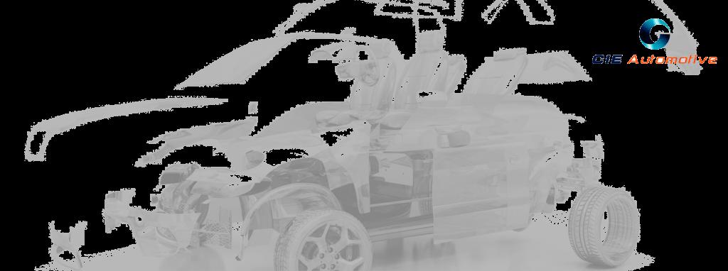 immex-immex-1024x382.png
