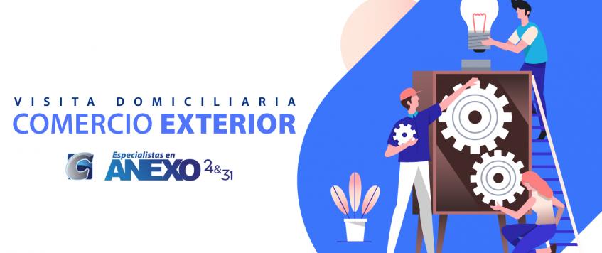 Visita Domiciliaria COMERCIO EXTERIOR