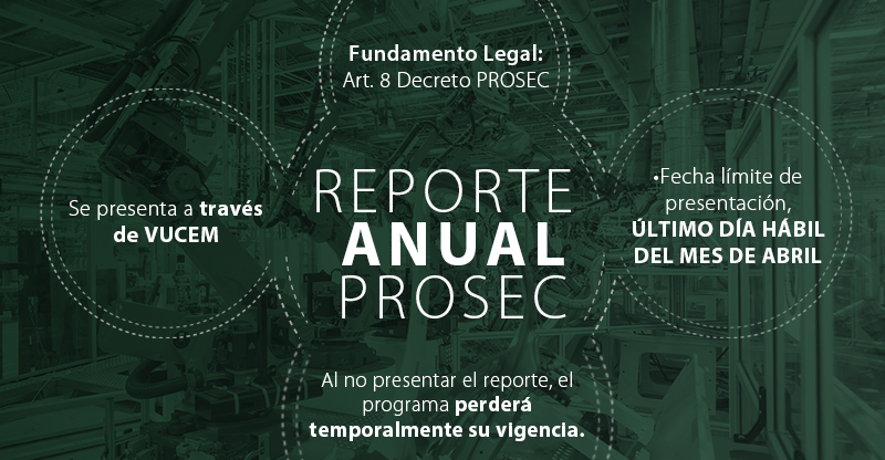 Reporte anualCOMMER