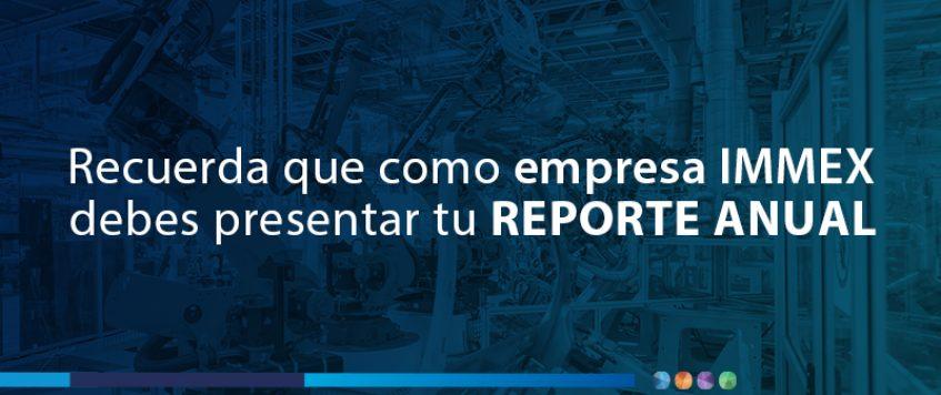 Reporte Anual  IMMEX 2020